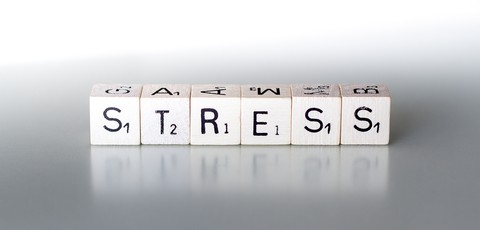 stress business owner