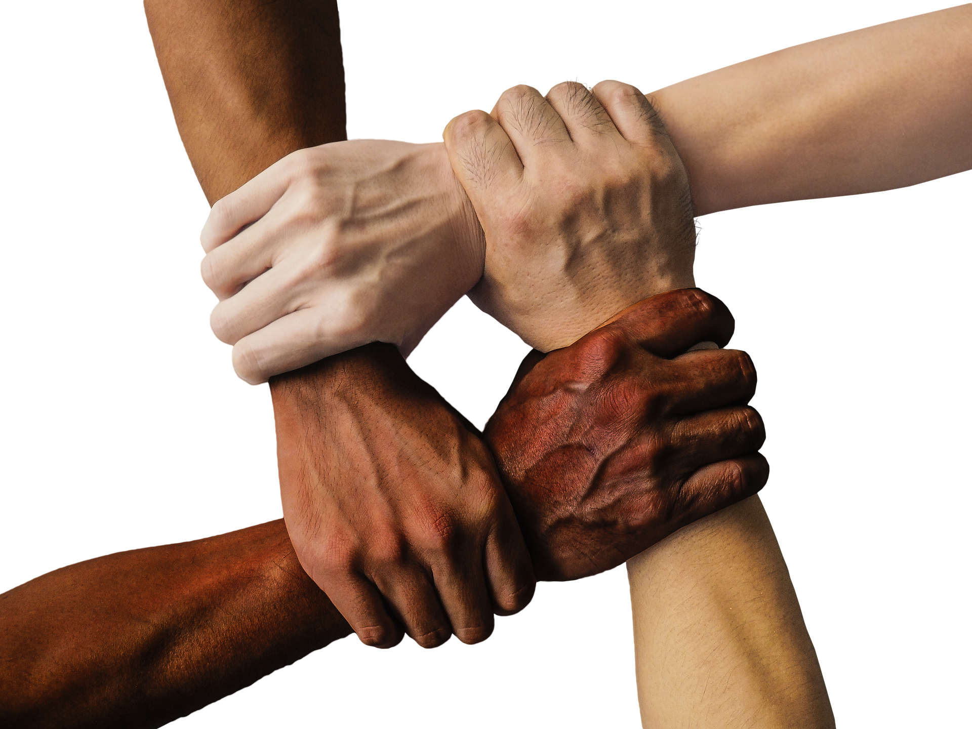 promote diversity - different skin toned hands holding each other
