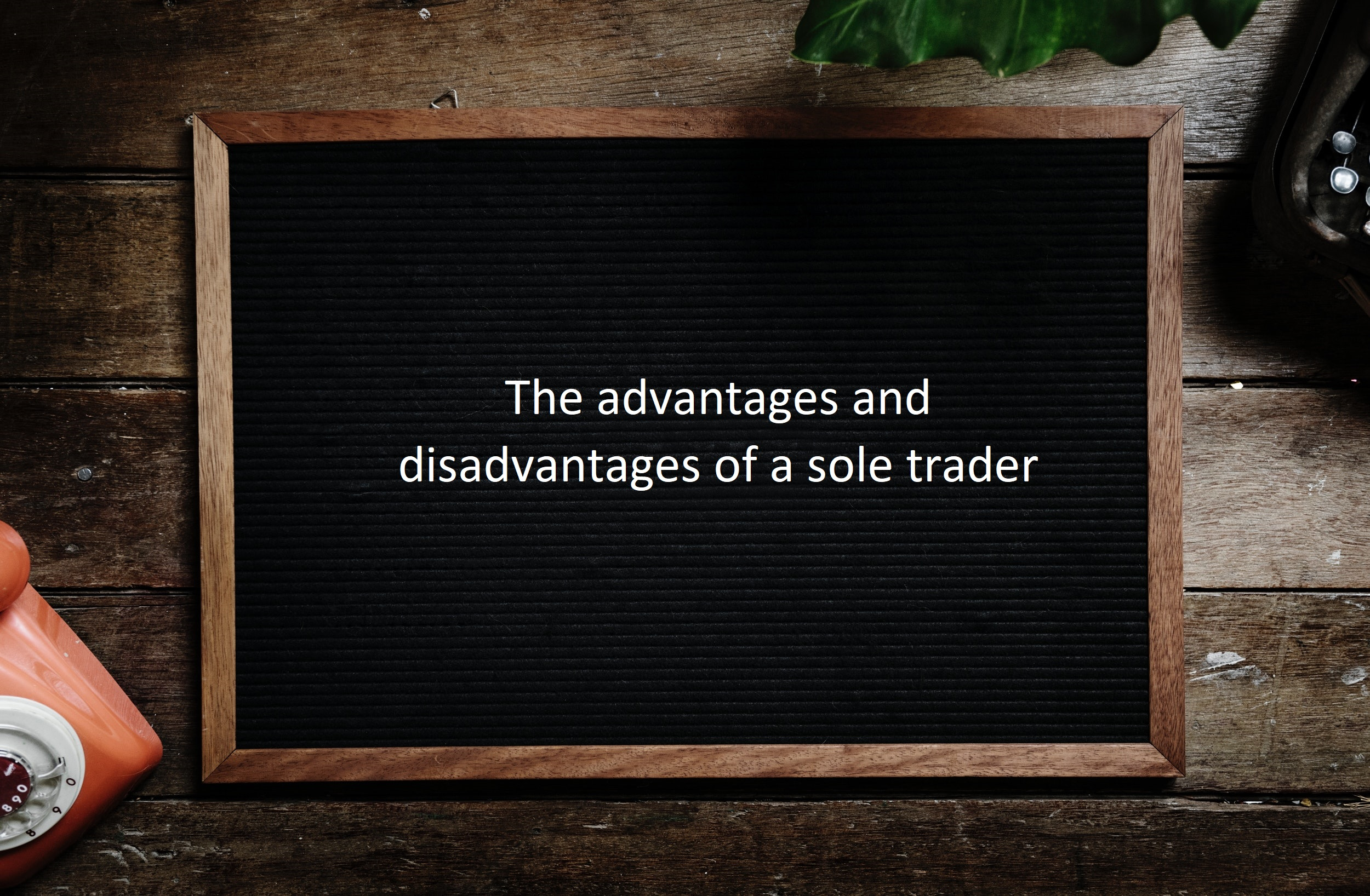 Sole trader advantages and disadvantages