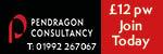 PendragonConsultancy - small business umbrella company directory